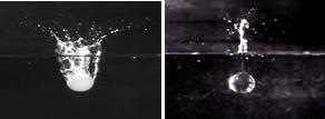 図1 膨潤度100の寒天ゲル球(左)とアクリル樹脂球(右)によるスプラッシュの違い